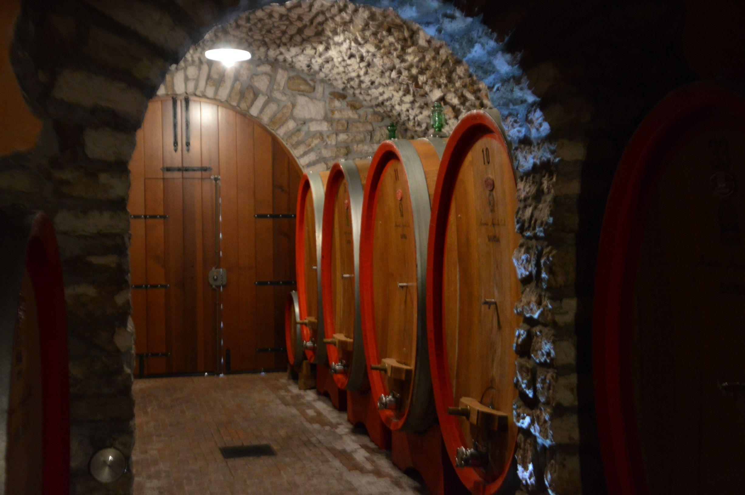 Tenuta Savoia (Az. Agr. Coali)  - The care of artisans in Sant'Ambrogio di Valpolicella