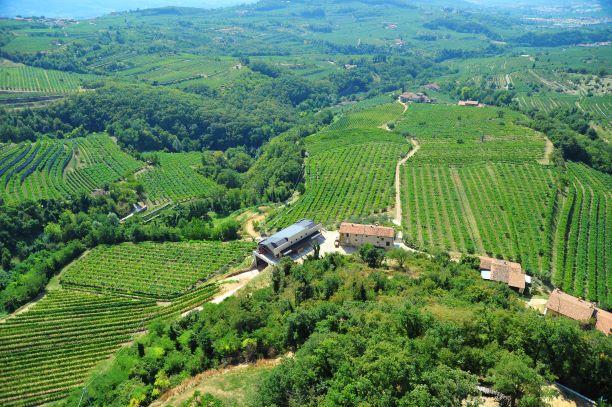 Novaia winery: organic to the core