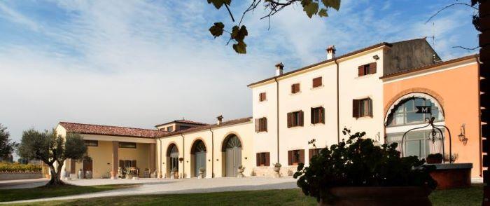 Mosconi winery: wine, music and psychology