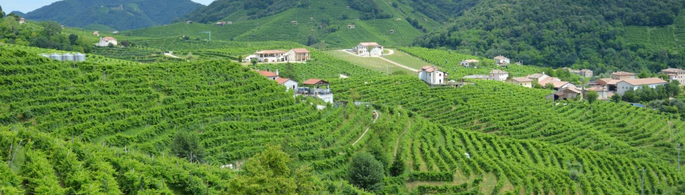 Prosecco and UNESCO: a winning combination