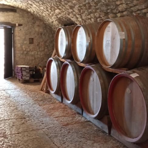 Il valore della tradizione, degustazione dei vini di Corte Archi 25.11.2021
