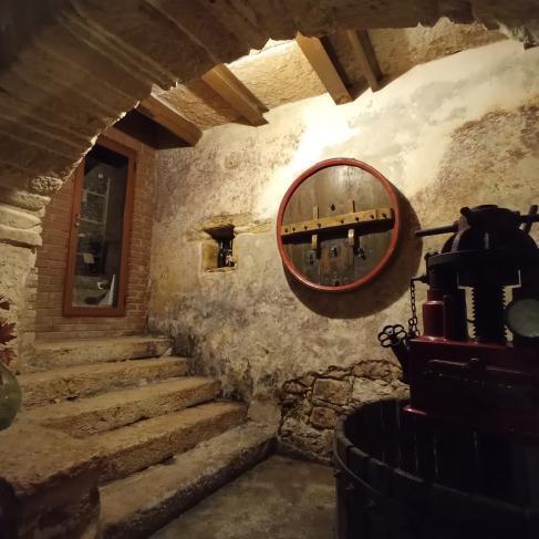 Vini biologici in Valpolicella, degustazione dei vini di Novaia 11.11.2021